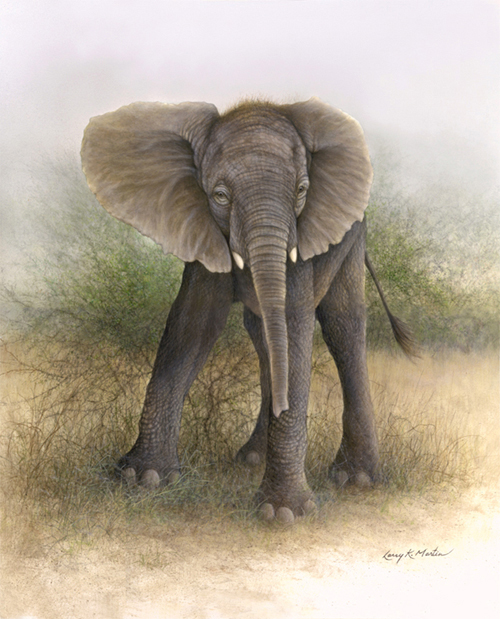 """Young Tuskers"" African elephant by American wildlife artist Larry K. Martin"