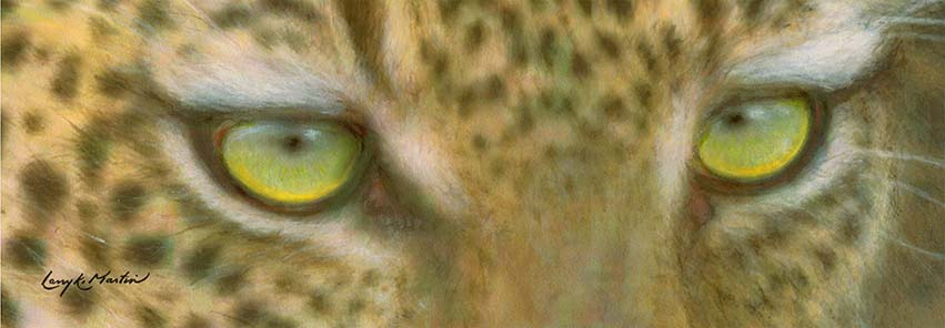 Emerald Eyes by Larry K. Martin