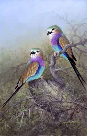 lilac breasted rollers by American wildlife artist Larry K. Martin