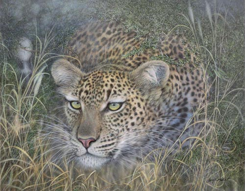 """Sound of Silence"" Leopard by Larry K. Martin"