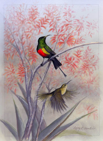 """All the Name Implies"" Beautiful Sunbird by American wildlife artist Larry K. Martin"