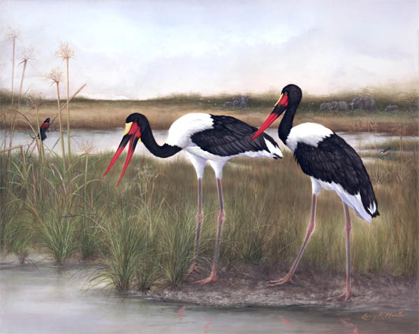 """Casual Dining in Formal Attire"" saddle billed storks by American wildlife artist Larry K. Martin"