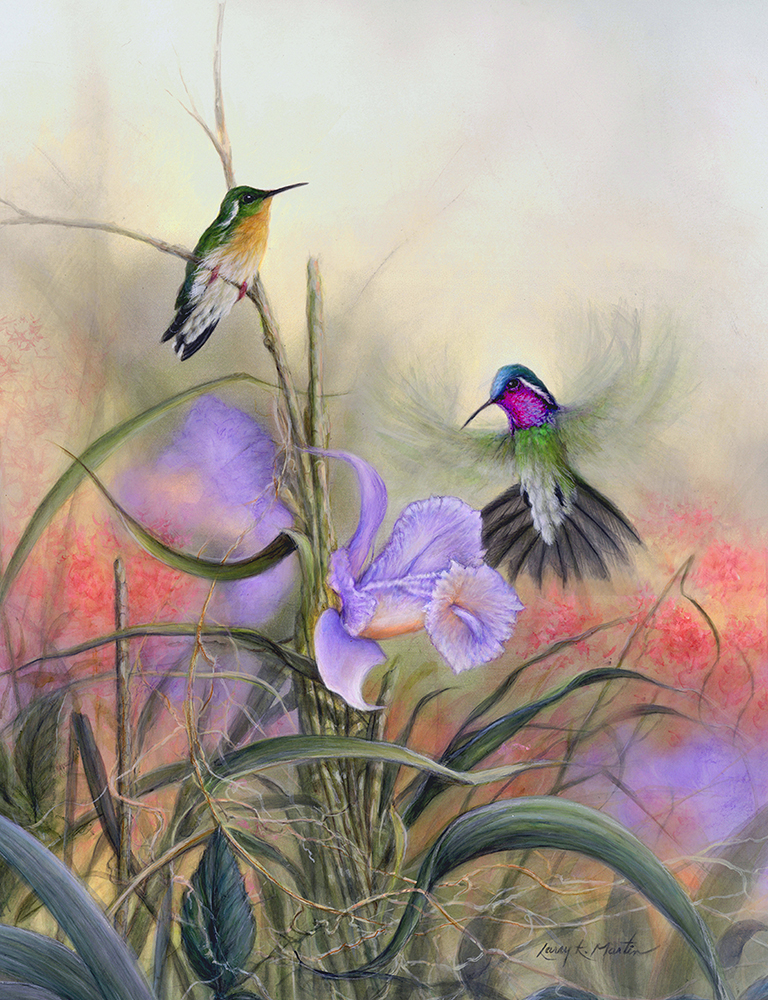 Mtn Gems - hummingbirds by Larry K. Martin