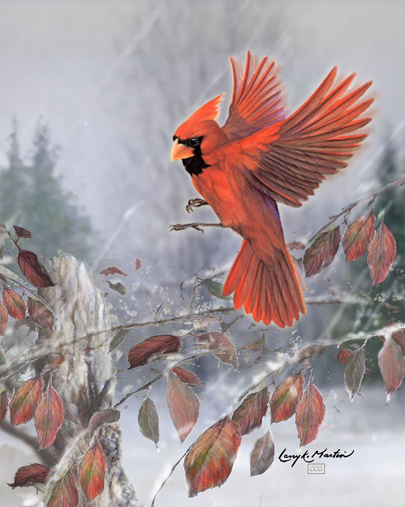 """Snow Birds"" - Male"